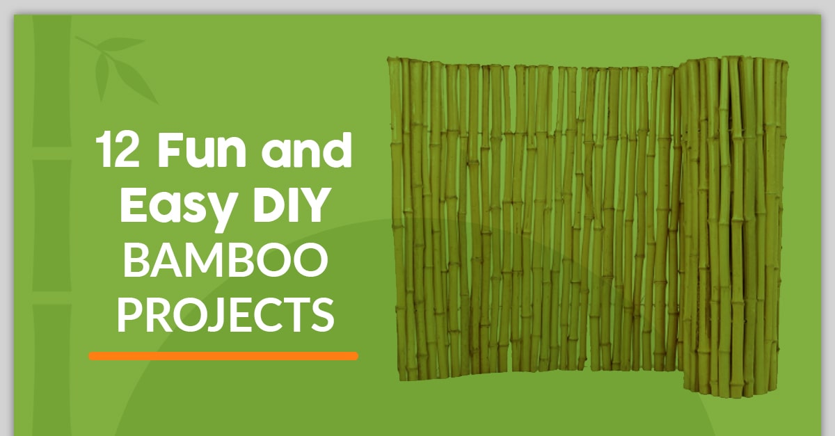 Fun and Easy Bamboo DYI Projects