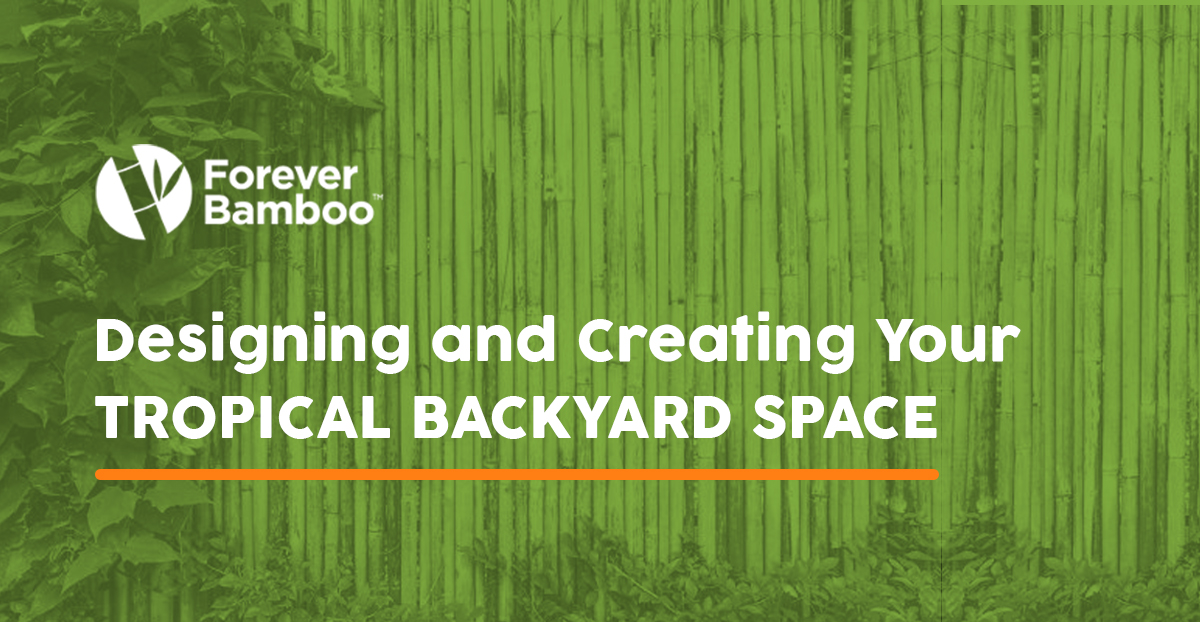 Designing and Creating DIY Tropical Backyard Space