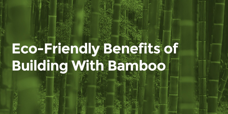 Eco-Friendly Building With Bamboo