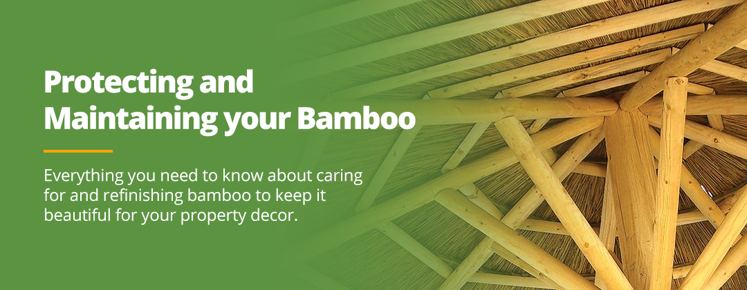 Protecting and Maintaining Bamboo