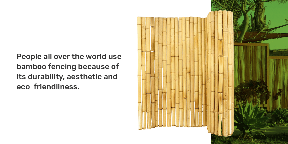 Bamboo Products for Interior Use