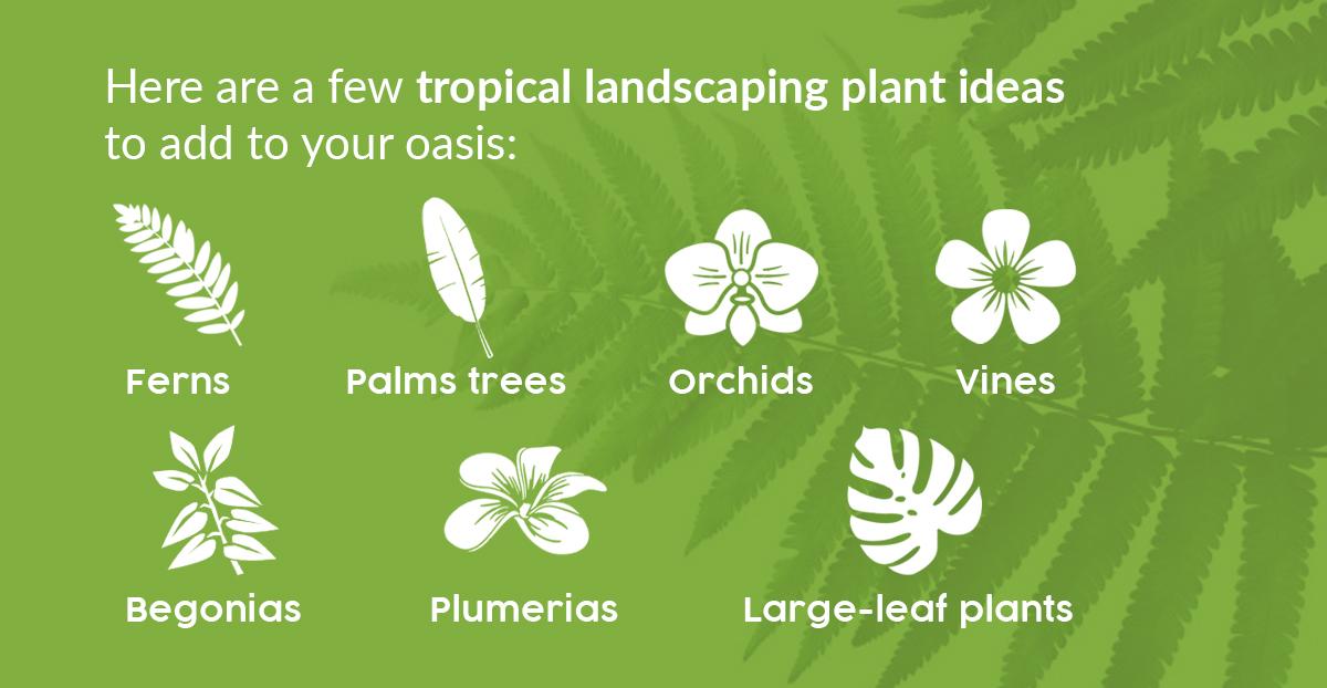 Backyard Tropical Plant Landscaping Ideas