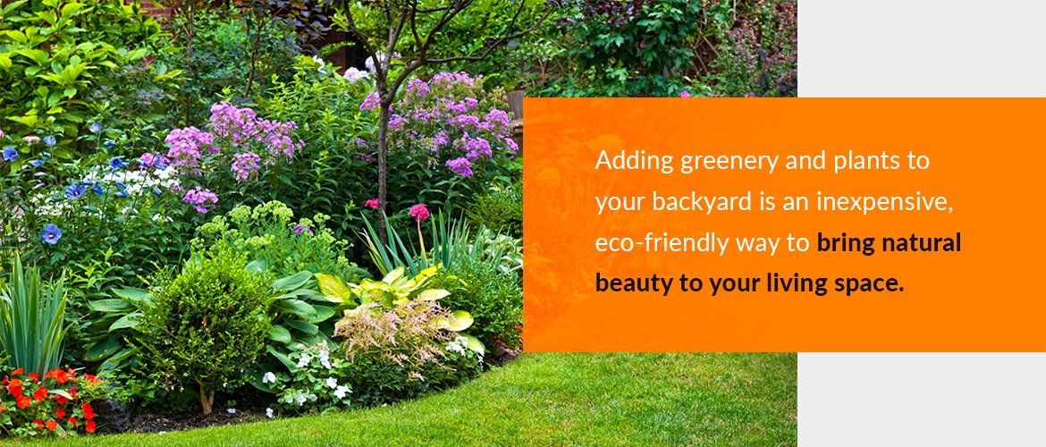 Adding plants and greenery to your backyard space