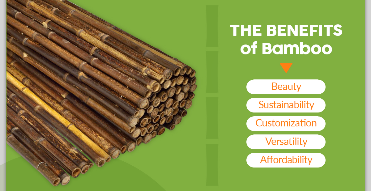 Benefits of Decorating with Bamboo