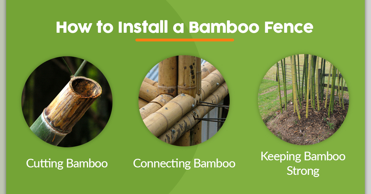 How to Install a Bamboo Fence