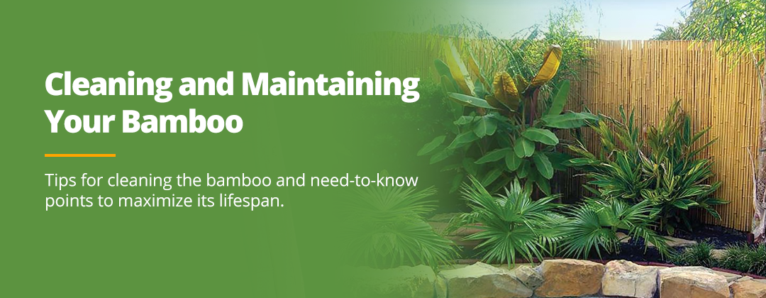 Cleaning and Maintaining Bamboo