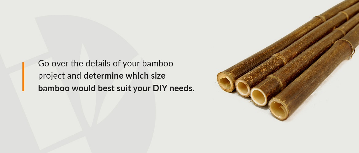 What Are the Best Bamboo Products for Your Garden?