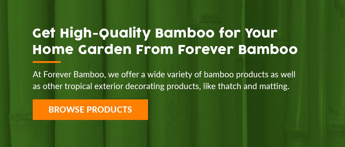 High Quality bamboo for your home garden from forever bamboo