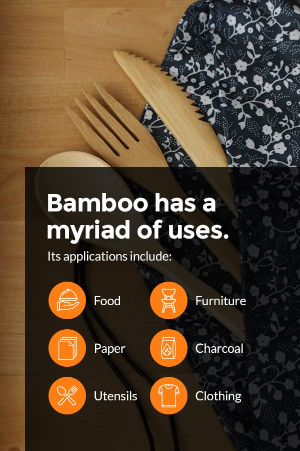 Common Uses of Bamboo
