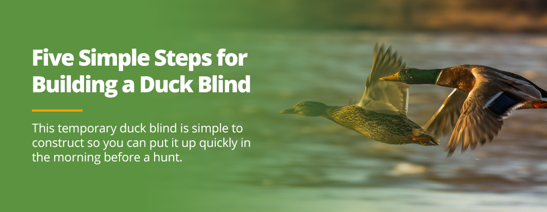 How to Build a DIY Duck Blind