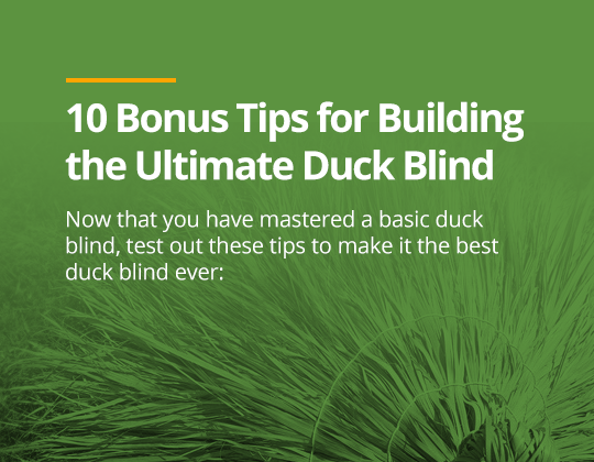 Duck Blind Building Instructions