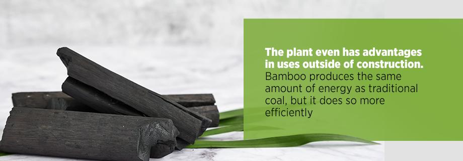 Bamboo Energy vs. Coal
