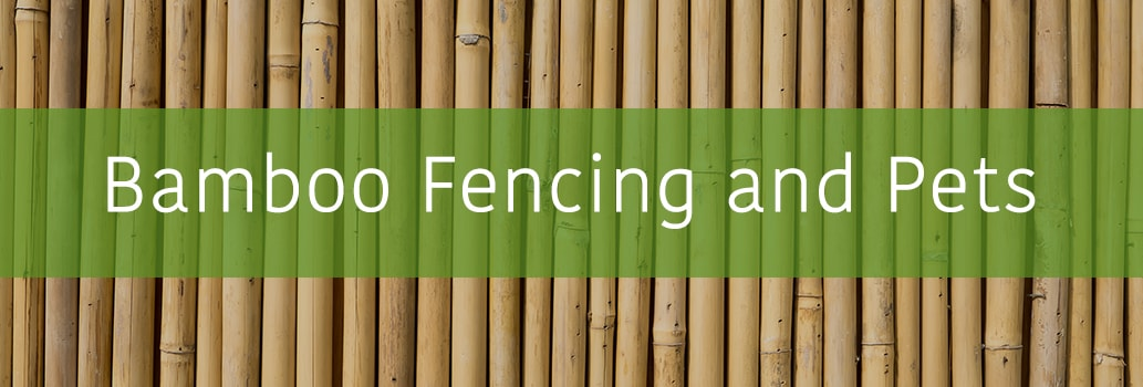 Bamboo Fencing and Pets
