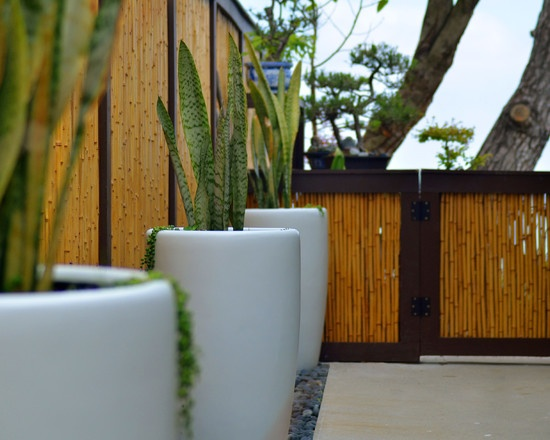 bamboo fencing forever bamboo