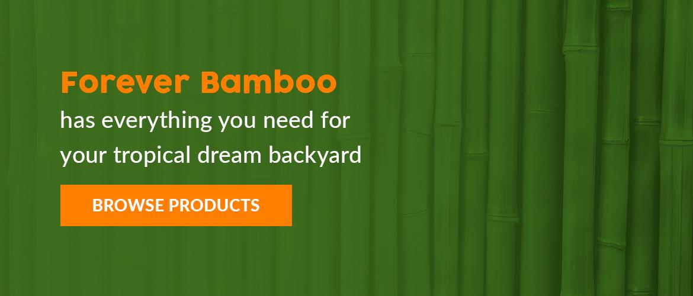 Create your dream tropical backyard