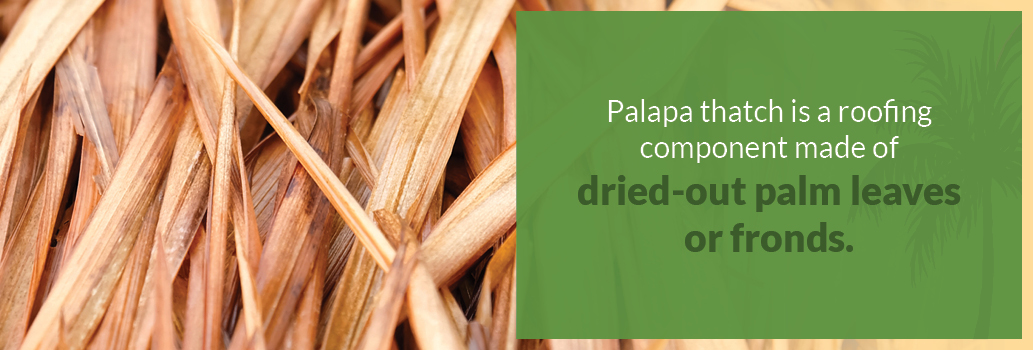 Palapa thatch roofing definition