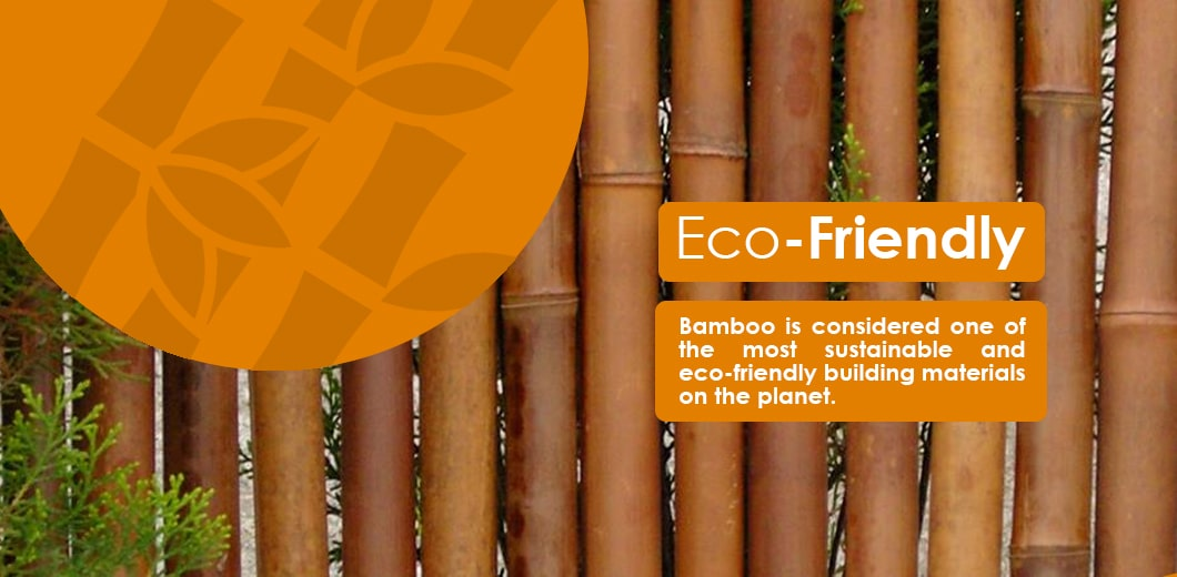 Eco-friendly fencing options bamboo