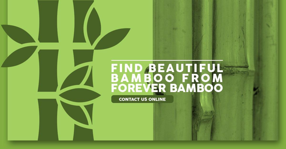 Beautiful Bamboo Products