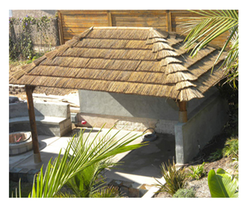 African-Thatch