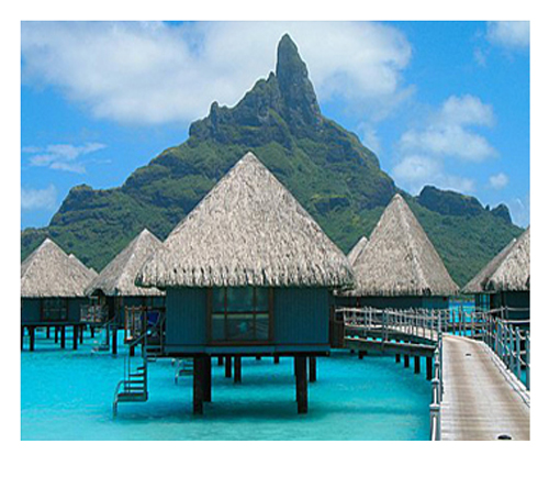 Tahitian-Thatch