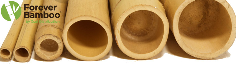 Buy Bamboo Poles