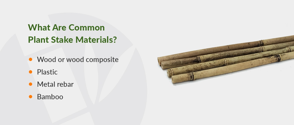 common types of plant stakes